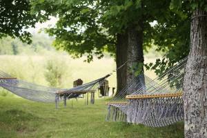 chill-countryside-green-4709